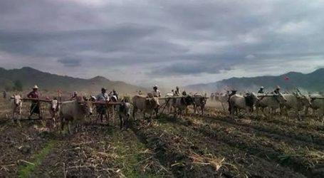 PETANI MYANMAR TUNTUT PEMBEBASAN TANAH DARI MILITER