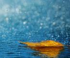 hujan-pics4world