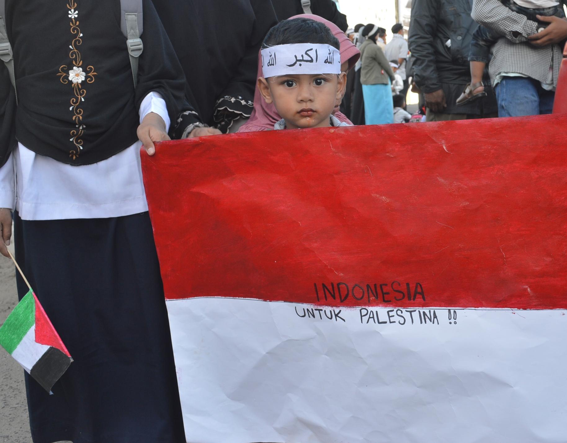 ORMAS ISLAM INDONESIA SAMBUT KEMENANGAN  GENCATAN SENJATA GAZA