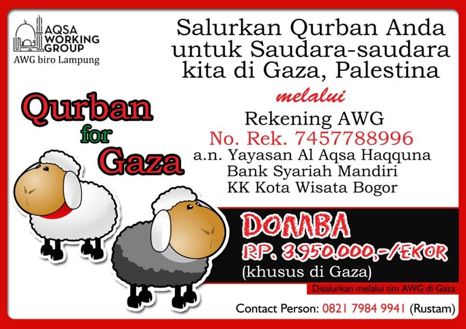 AQSA WORKING GROUP ADAKAN PROGRAM KURBAN UNTUK GAZA