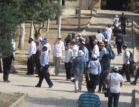 DUA WANITA PALESTINA DILARANG MASUK MASJID AL-AQSHA 15 HARI