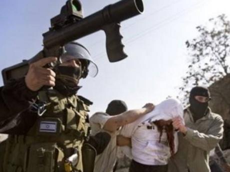 Tentara Israel Culik Sepuluh Warga Palestina di Tepi Barat