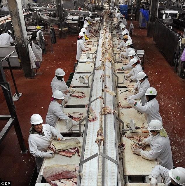 Muslim Belgia Ajukan Banding Atas Larangan Penyembelihan Halal