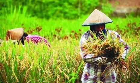 Jepang Tertarik Investasi di Sektor Pertanian dan Komponen Otomotif
