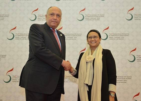 Indonesia-Mesir Sepakat Bawa Hasil KTT OKI-Palestina Ke PBB