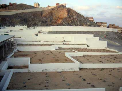 Jumlah Jemaah Haji Wafat di Saudi Capai 207 Orang