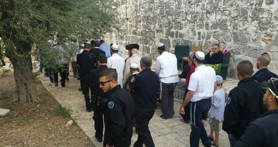 Ekstremis Yahudi Gelar Pawai Provokatif Dekat Al-Aqsha