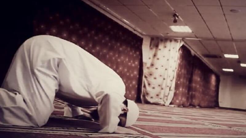 Diberi Hidup Mengapa Ingkar? Kajian Al-Baqarah 28-29