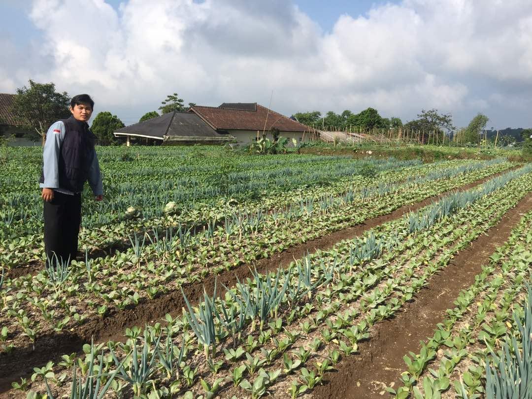 Gerakan #zakat360 Dompet Dhuafa Diharapkan Mampu Raih Kemandirian Ekonomi Petani
