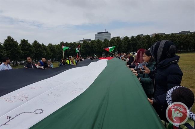 Bendera Palestina Terbesar Berkibar di Belanda