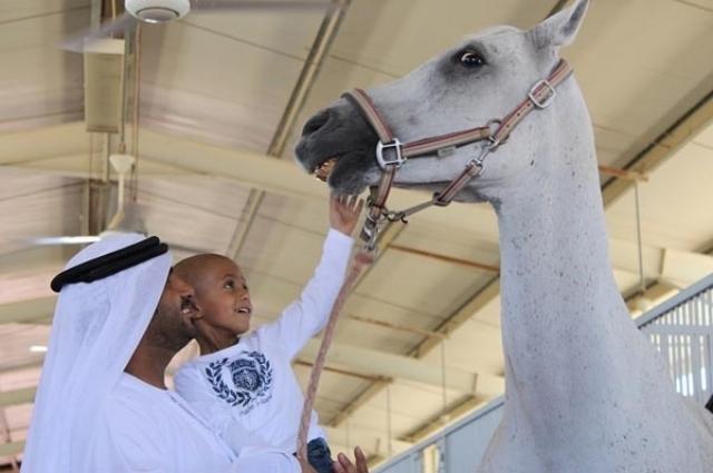Cegah Virus, Arab Saudi Putus Impor Kuda Dari Spanyol