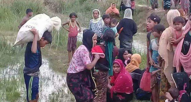 Erdogan Desak PBB Intervensi Krisis Rohingya