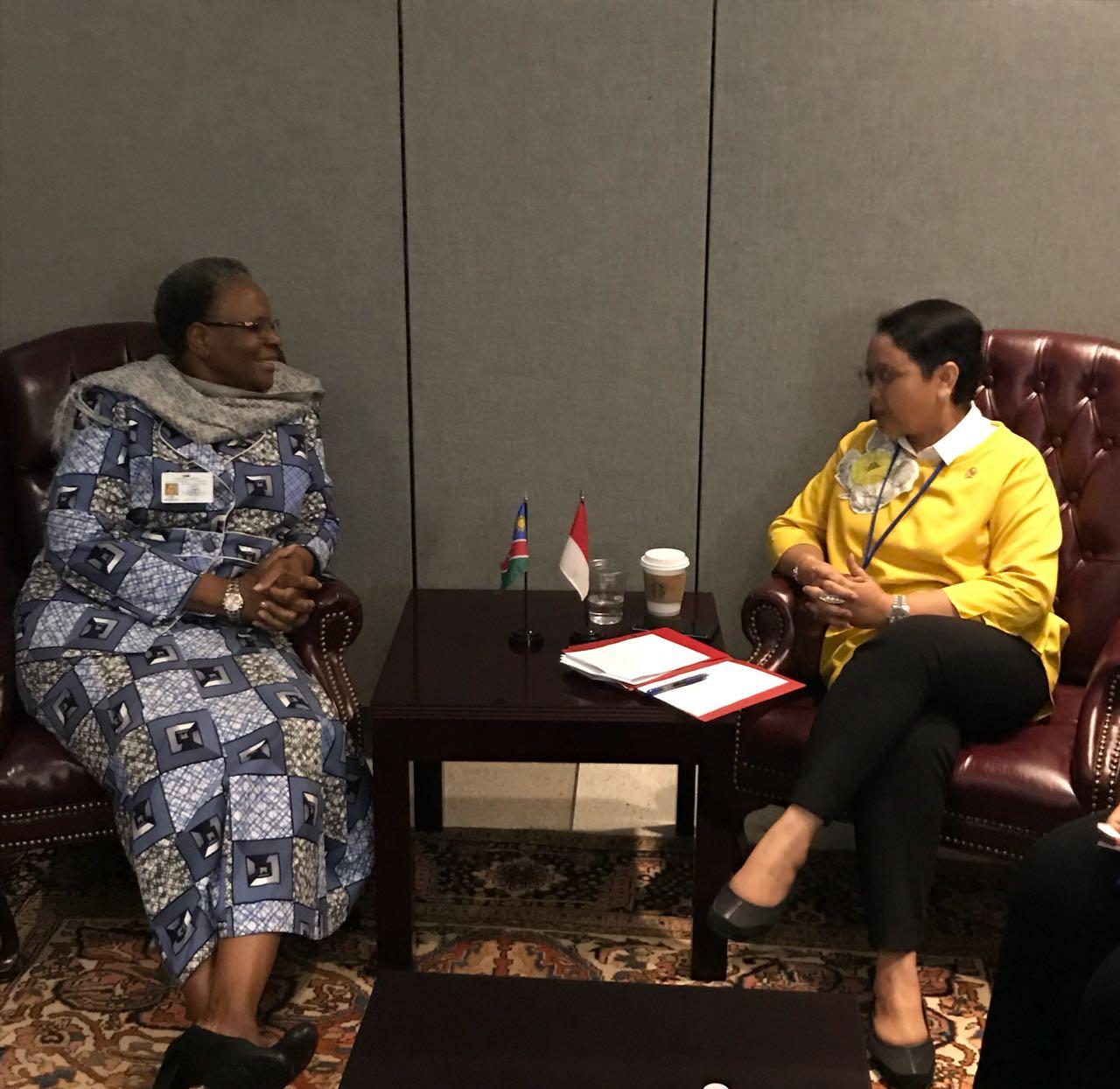 Indonesia dan Namibia Sepakat Tingkatkan Perdagangan