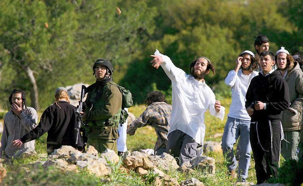 Pemukim Israel Lempari Rumah Warga Palestina