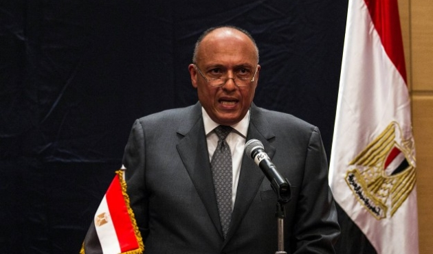 Menlu Saudi-Mesir Diskusikan Perundingan Israel-Palestina