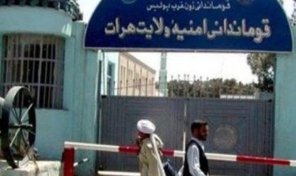 Bentrok dengan ASF, Komandan Taliban Terluka