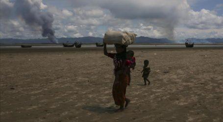 Utusan Khusus Kanada Desak ASEAN Tuntaskan Kasus Rohingya