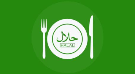 Mulailah Dengan yang Halal