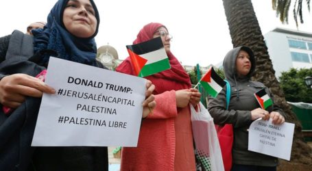 Pawai Berbagai Kalangan Masyarakat Dukung Palestina di Amsterdam