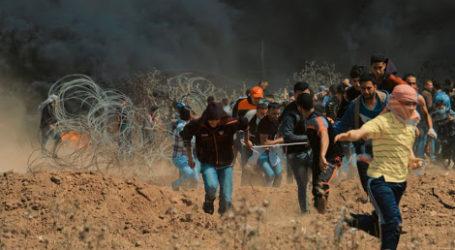 Pemuda Palestina Sita Kamera Pengintai di Pagar Pembatas Gaza