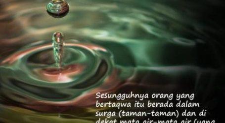 Taqwa dan Muhasabah (Oleh : Imamul Muslimin)