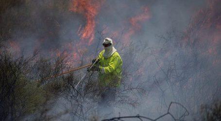 Gencatan Senjata, Drone Israel Serang Yang Terbangkan Layang-layang Api