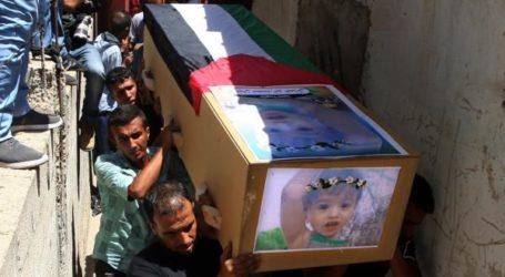 Terbunuh Dua Warga Palestina Yang Lakukan Protes  di Perbatasan Gaza