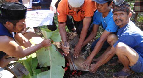 UAR Salurkan Daging Kurban Bagi Pengungsi Lombok