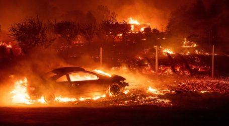 Kebakaran Alam di California Lahap Beberapa Bangunan Lembaga Yahudi