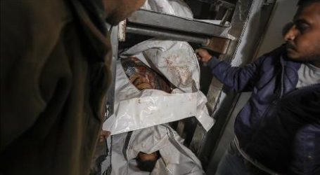 Nelayan Palestina Ditembak Mati di Masa Gencatan Senjata