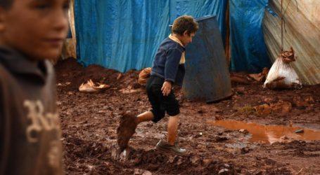 PBB: Warga Suriah Butuh 'Rekonstruksi Psikologis dan Sosial'