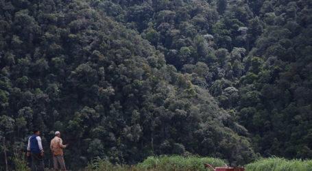 GeRAK Aceh: Kebijakan Harus Pro Hutan dan Lingkungan
