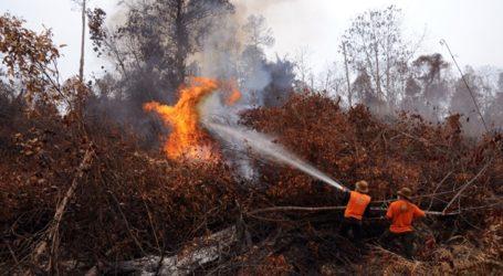 Hutan Lindung di Sabang Terbakar