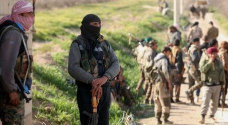 Demokratik Suriah: Belum Ada Tanda-tanda ISIS Menyerah