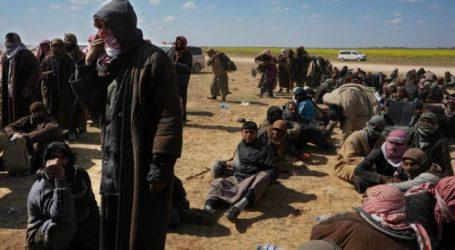 SDF Tangkap 400 Pejuang ISIS yang Hendak Kabur, Ratusan Menyerah