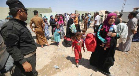 Sekelompok Warga Yazidi Tawanan ISIS Bersatu Kembali dengan Keluarganya