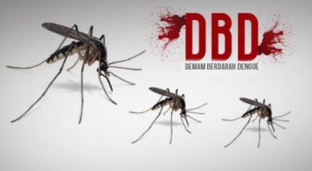 Serangan DBD di Aceh Barat Daya Capai 131 Kasus