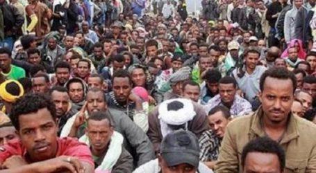 Ribuan Migran Afrika Ditangkap di Yaman Selatan
