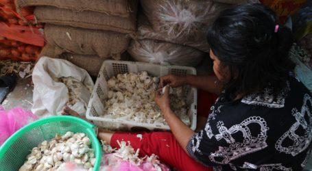 Impor Bawang Putih Jelang Ramadhan, Pakar: Perlu Dipastikan Stoknya