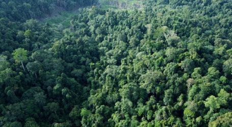Desa Bunin Akan Menjadi Hutan Desa (Oleh: Aprizal Rachmad, wartawan MINA di Banda Aceh)