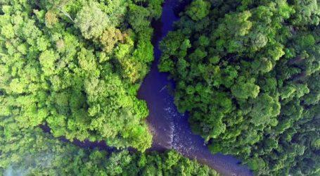 KLHK Segera Tetapkan Hutan Adat di Aceh