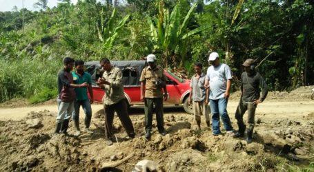 BKSDA Evakuasi Kerangka Gajah