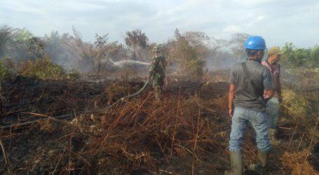 Kebakaran Lahan di Aceh Barat Capai 35 Hektare