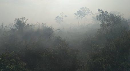 Kebakaran Hutan dan Lahan di Aceh Sudah 111,04 Hektare