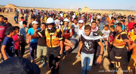 34 Peserta Great March of Return di Gaza Tertembus Peluru Tajam