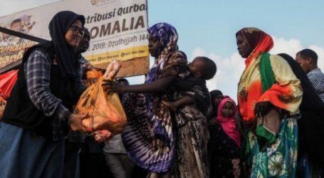 Global Qurban – ACT Targetkan 35 Ribu Hewan Qurban Tahun Depan