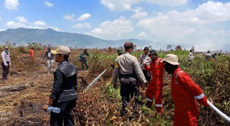 Lahan Seluas 150 Hektar Terbakar di Kolaka Timur, Sultra