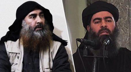 Kurdi Beri Info Al-Baghdadi ke Intelijen AS