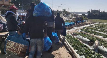 Hasil Panen Tidak Bisa Dijual, Petani Gaza pun Terancam Ditembak