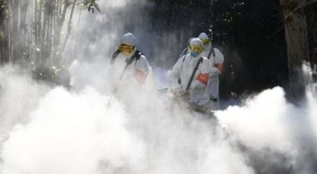 100 Hewan Liar di Cina Mati Terkena Racun Virus Corona